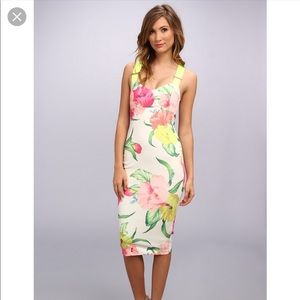 Ted Baker Taylar Floral Midi Dress